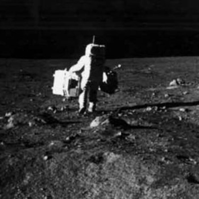 the cuke – First Moon Landing – Cure For Dogs